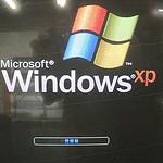 windows xp photo